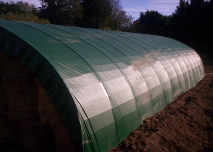 Tunnel basilique de stockage agricole